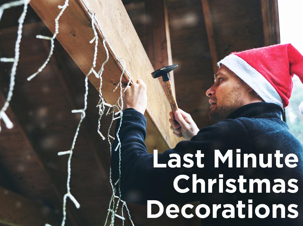 Ditto Christmas Lights