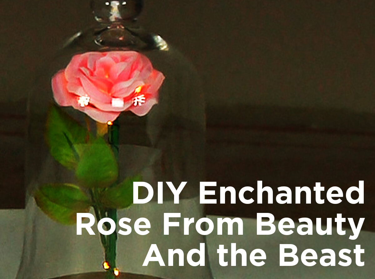 Diy Enchanted Rose From Beauty And The Beast 1000bulbscom Blog