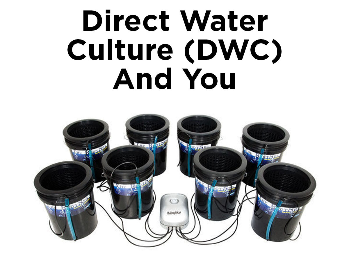 Flickering Lights When You Need To Worry 1000bulbscom Blog 2 Way Lighting Circuit Wiring Diagram Direct Water Culture Dwc And