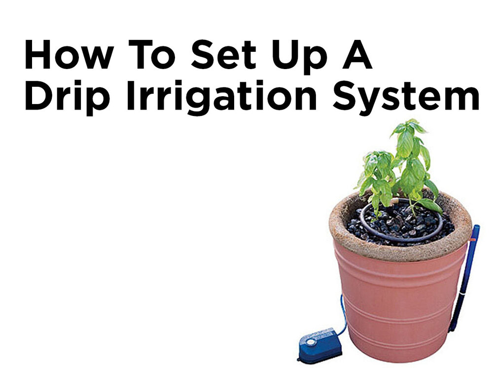 How To Set Up A Drip Irrigation System