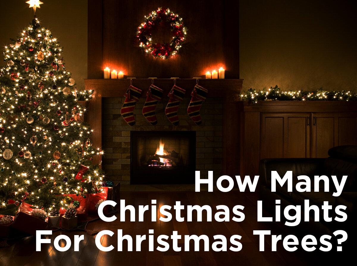 How Many Christmas Lights For Christmas Trees 1000bulbs