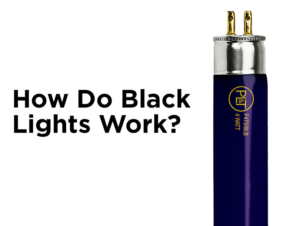 How Do Led Lights Work >> How Do Black Lights Work? — 1000Bulbs.com Blog