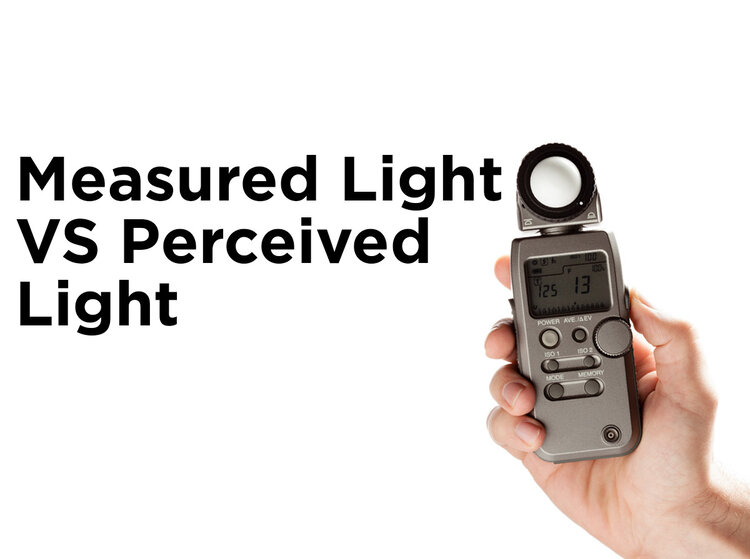 Bulbs Seem Dim? Measured vs  Perceived Light — 1000Bulbs com