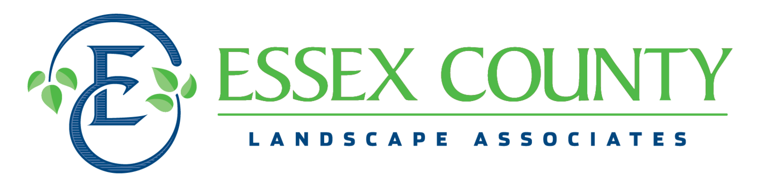 Essex County Landscape