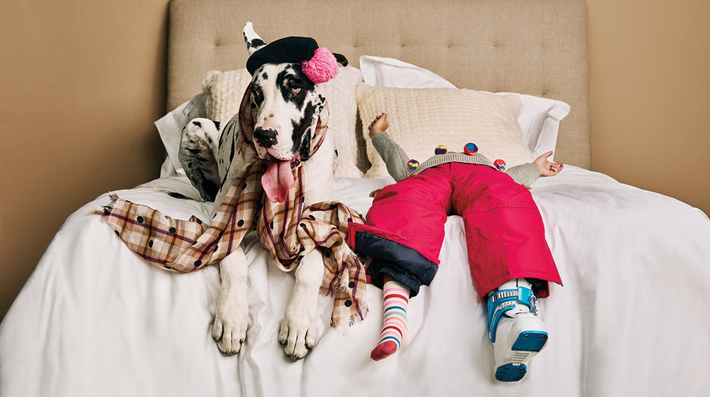 Dog&Bed Gallery.jpg