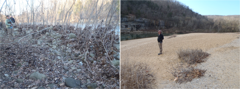 The gravel bar near Boxley (left) has a median size of 35 mm although here it looks even larger than that! The gravel bar at Buffalo Point (right) is much smaller than upstream with a median grain size of about 10 mm and that's not counting the sand fraction that also increases downstream.