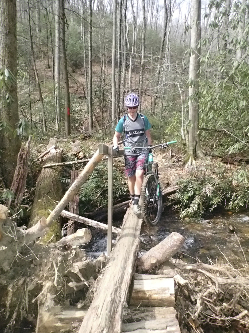 "Pre-Columbian bridges are common along Cove Creek trail and throughout Pisgah National Forest. Interesting to negotiate at ""race pace."""