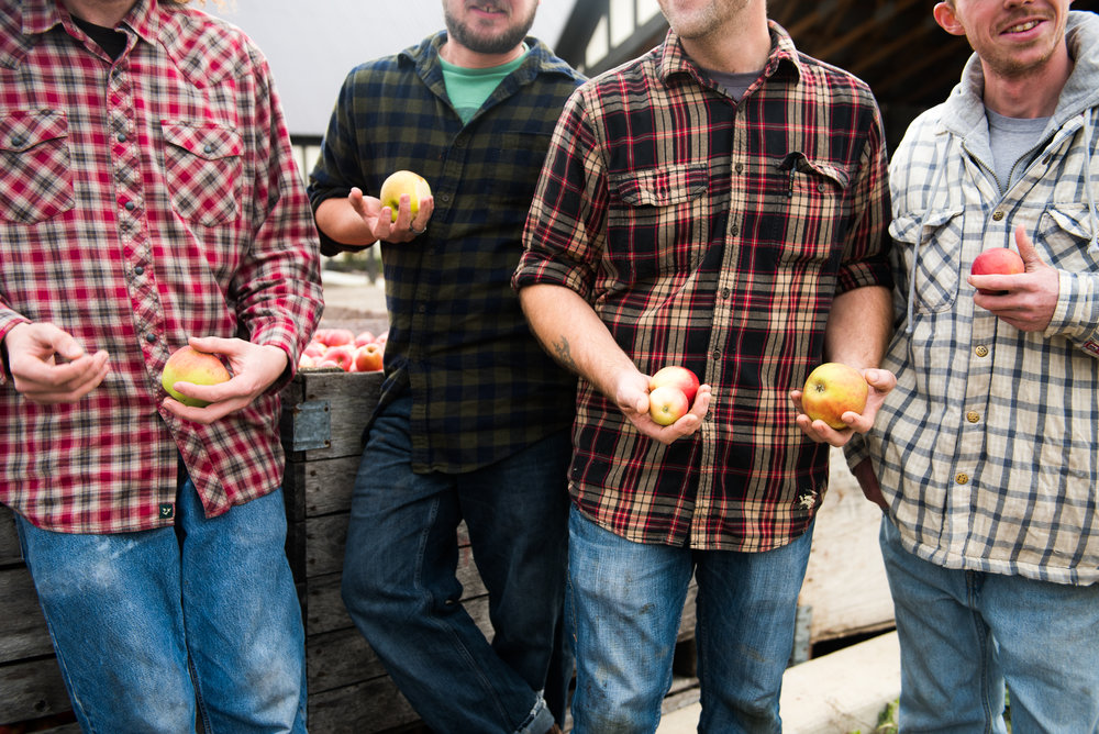 We make cider the traditional way — on a farm with local apples. We use 100% Michigan apples from local farmers.