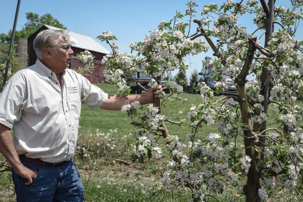 overhiser orchards-9.jpg