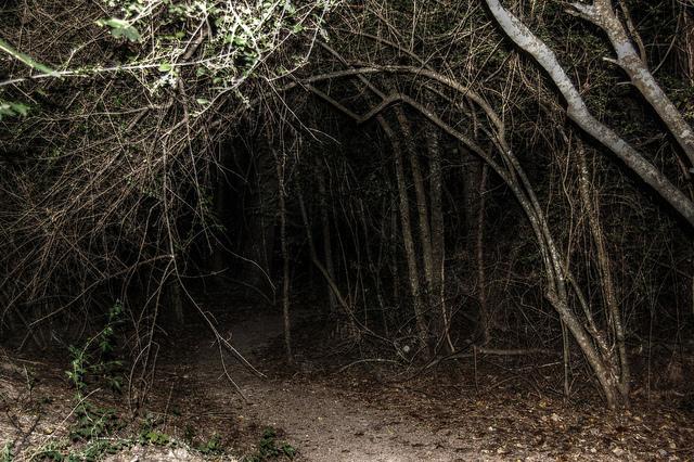 spooky trail walks.jpg