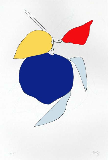 ellsworth kelly fave colors copy.jpg