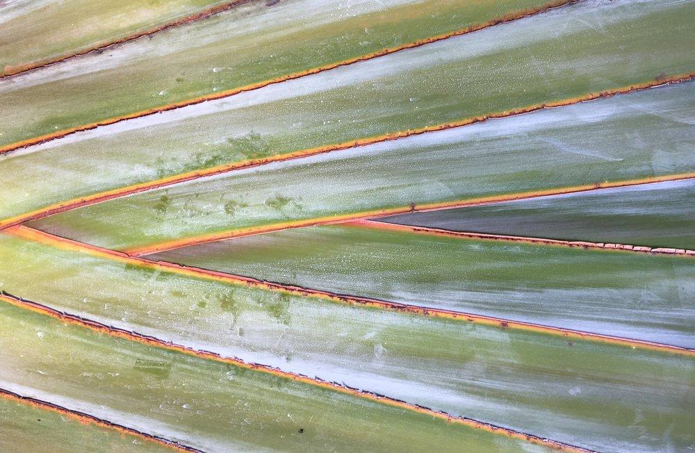 Annie Berner Palm Nairobi.jpg