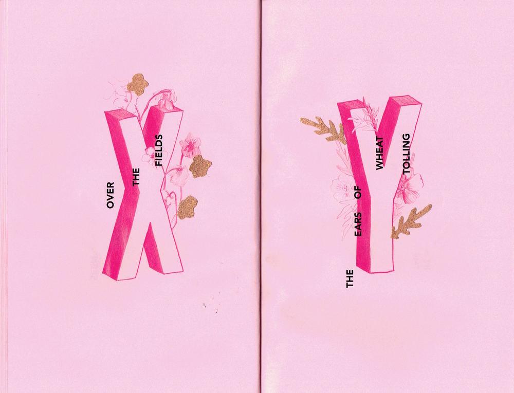 X,Y.jpg
