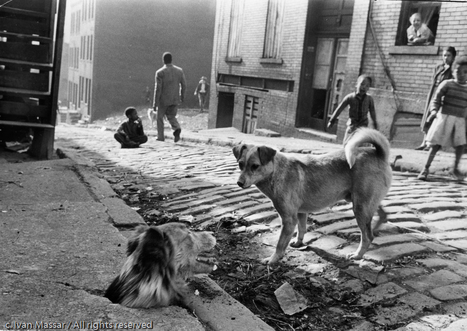 """I'm Not Allowed Out,"" Hill District.  Pittsburgh, PA, 1952"