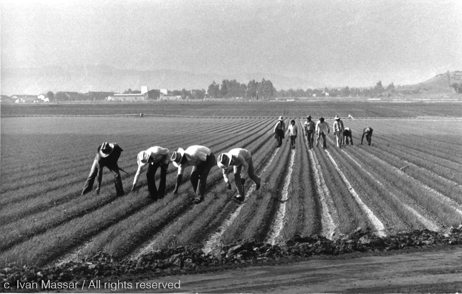 Farming.  Southwest, USA, 1956.