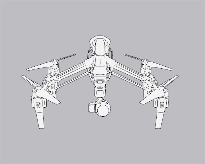 line-drawing-SPC-bg-01.jpg