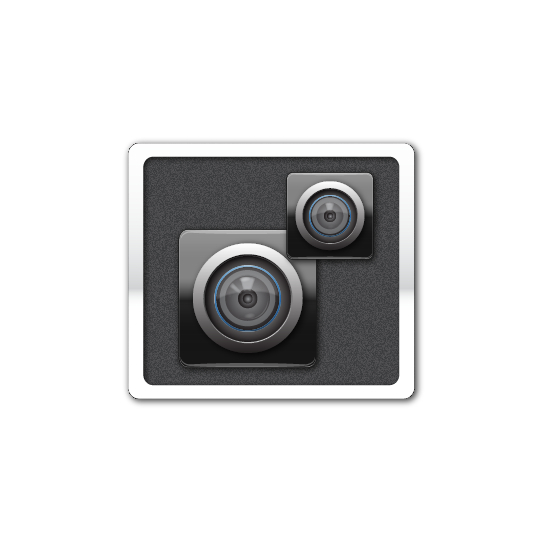 2CamerasBlk_icon.jpg