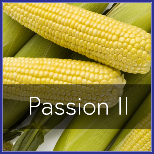 Passion II.png