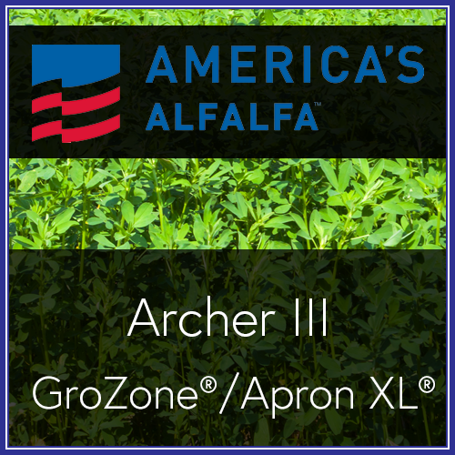 Archer III GZAXL.png