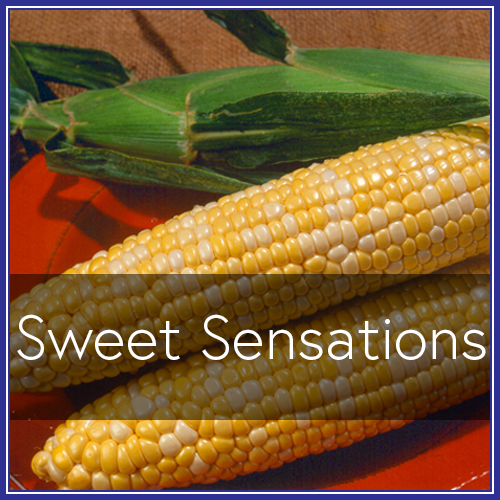 Sweet Sensations.png
