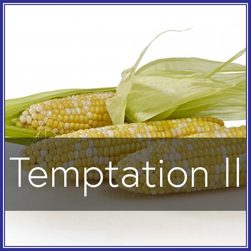 Temptation II.png