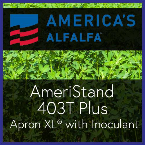 403T Plus AXLI.png