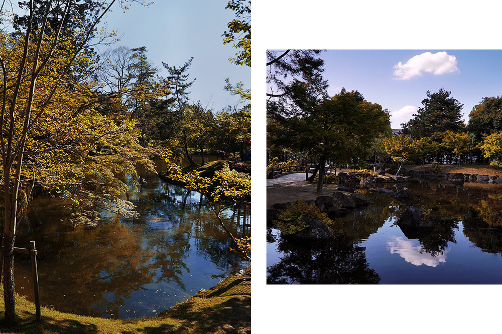 Both: Nara Park.