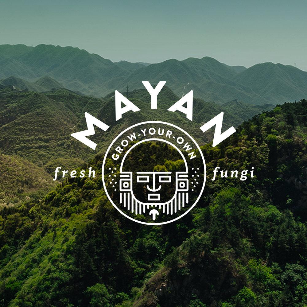 MayanWithPhotoSquare.jpg