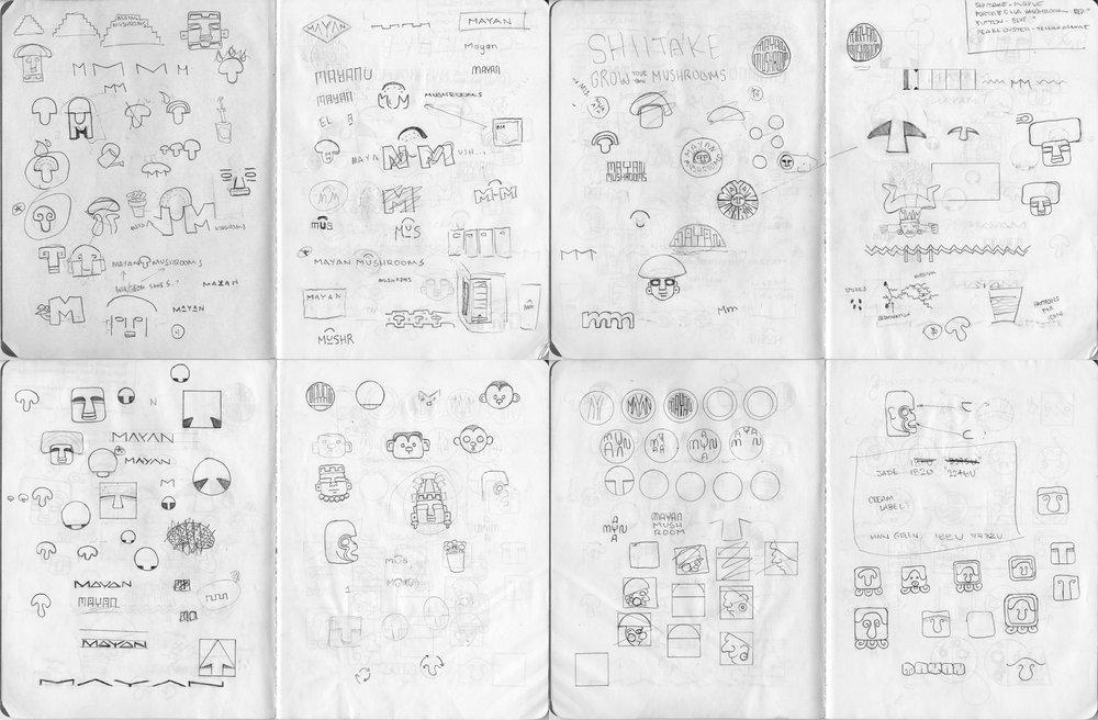 Mayan_Process.jpg