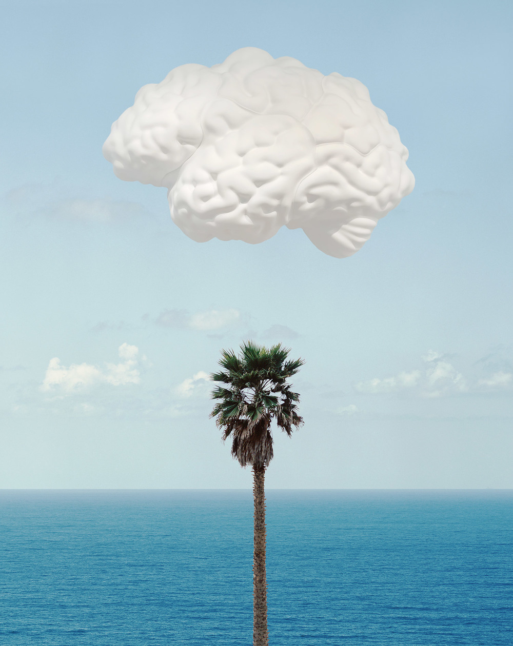 Brain/Cloud (With Seascape and Palm Tree) , 2009 Publisher: Counter Editions Limited, Edition of 145.  © John Baldessari