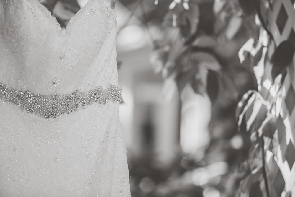 LOVEANDLIGHTPHOTOGRAPHY-0906.jpg