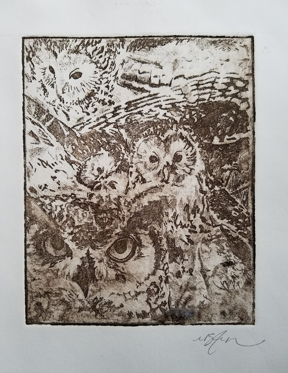 """Collage of Owls"" -2014 Intaglio print on Stonehenge"