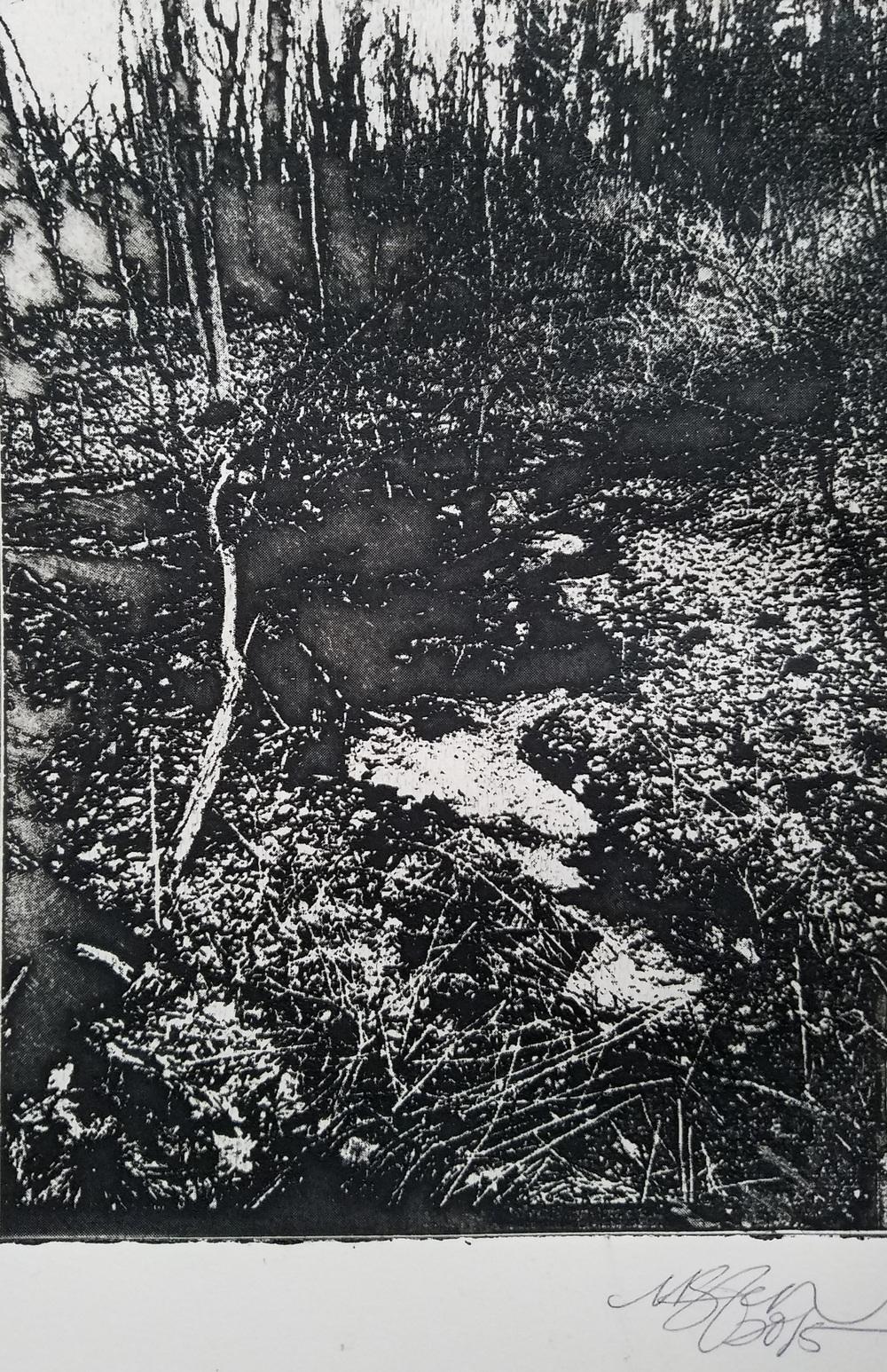 """Landscape Photograph"" -2015 Solar Plate print on Stonehenge"