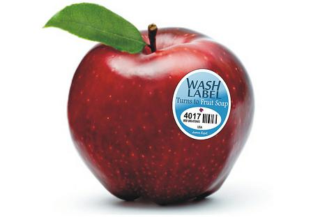 FRUIT_WASH_LABELS--element76.jpg