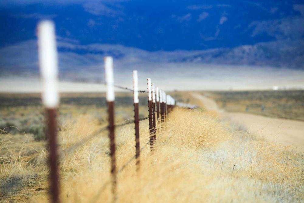 20120219-Fence In Winter 01.jpg