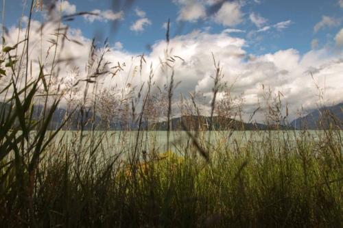 Across A Lake.jpg