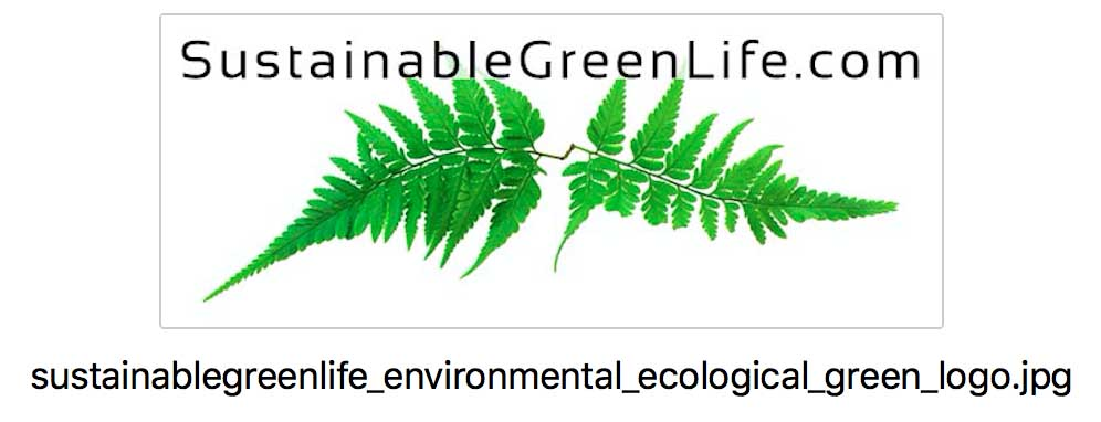 KerryAThompson.com Blog: A logo and caption that appear on SustainableGreenLife.com with a filename for optimal SEO.