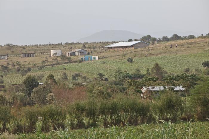 Moi Ndabi-190.jpg