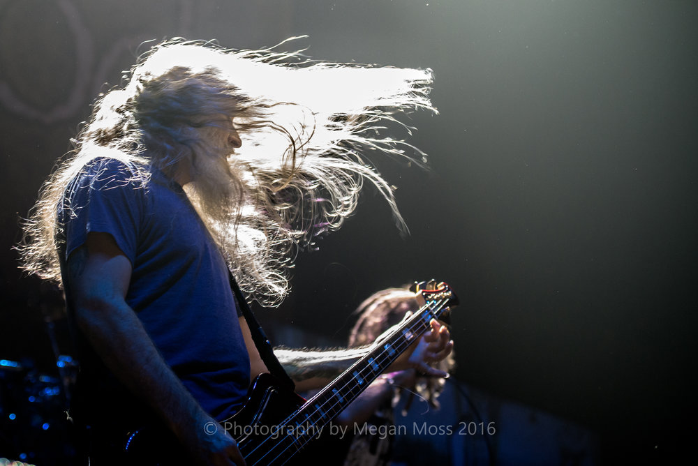 Lamb of God_Vector_-6.jpg