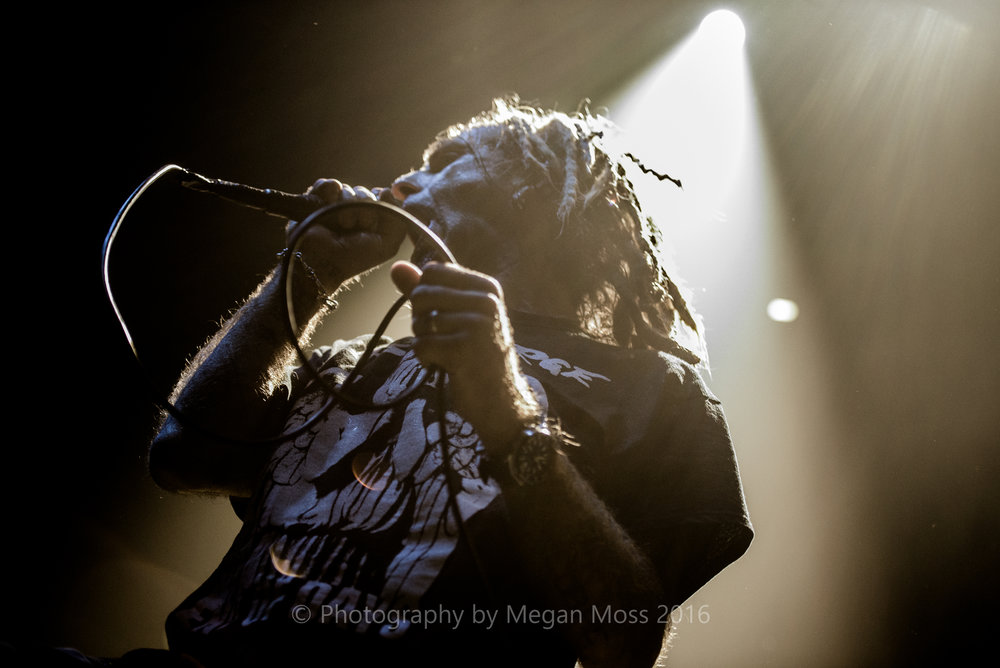 Lamb of God_Vector_-9.jpg
