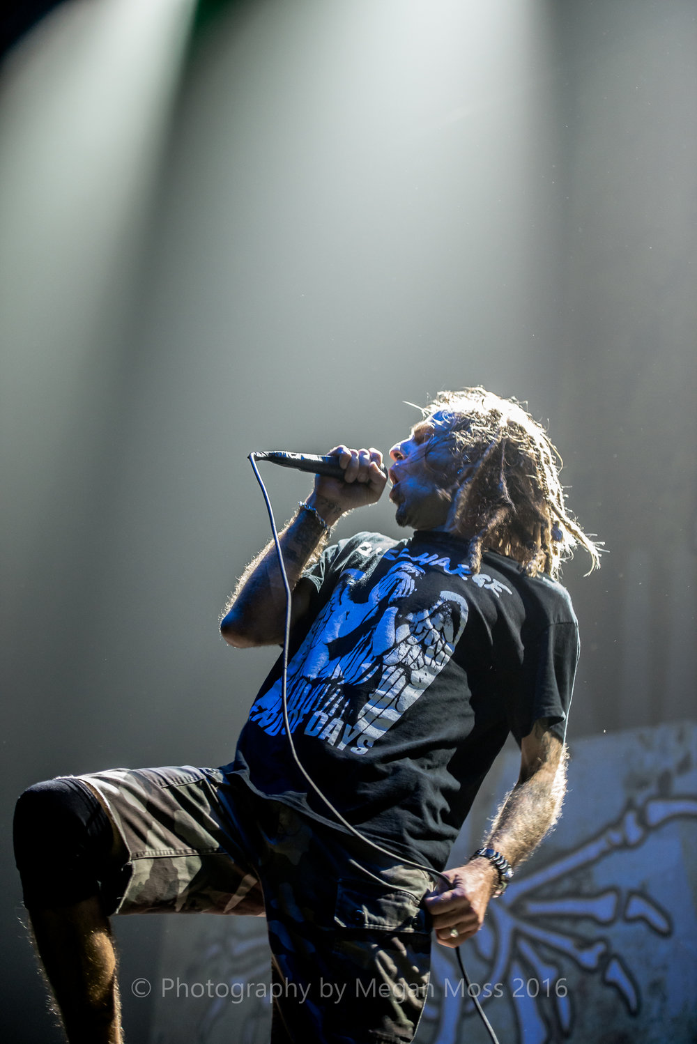 Lamb of God_Vector_-11.jpg