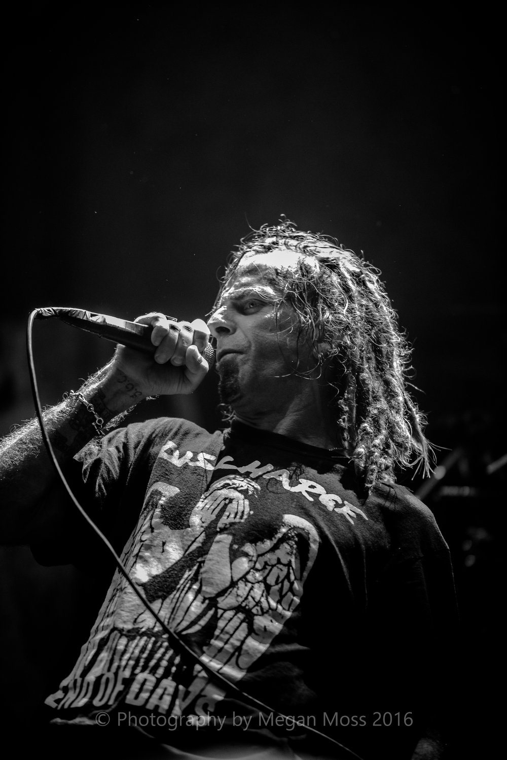 Lamb of God_Vector_-12.jpg