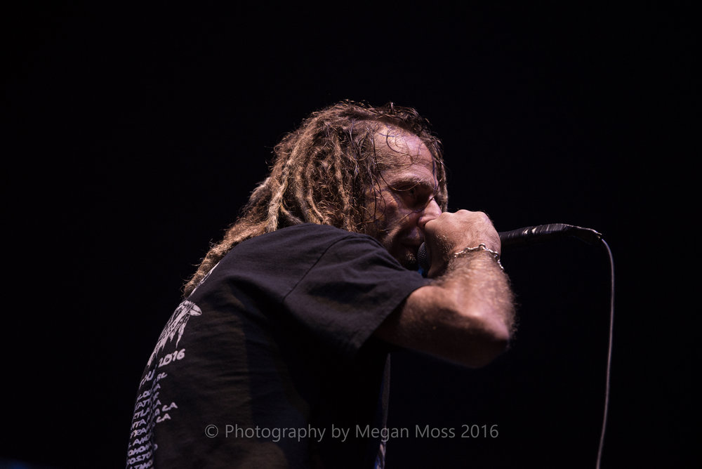 Lamb of God_Vector_-13.jpg