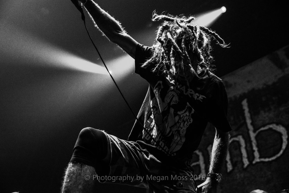 Lamb of God_Vector_-20.jpg