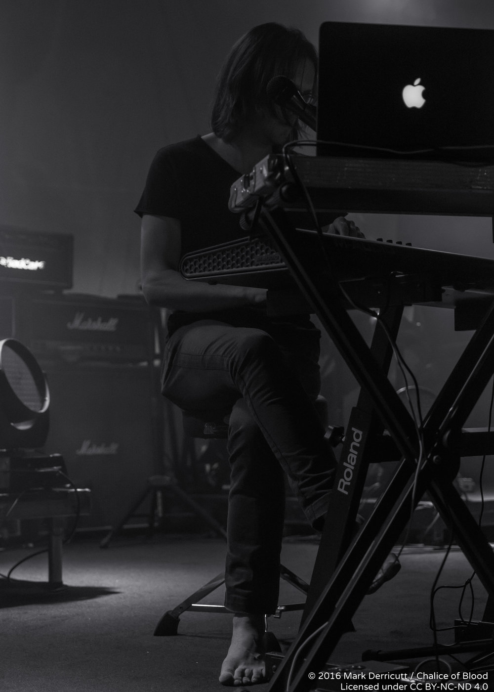 Steven Wilson - 2.jpg