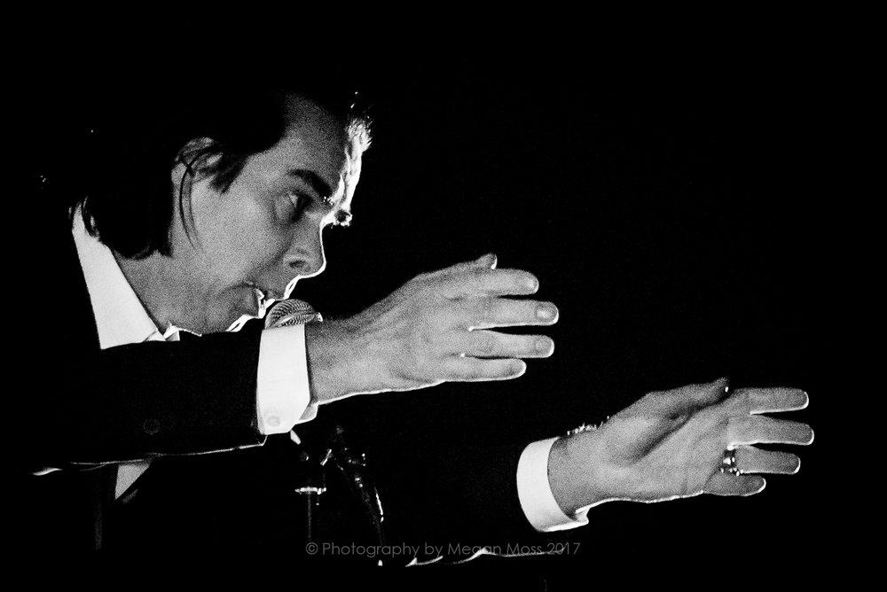 Nick Cave - Vector - 18 Jan 2017-10.jpg