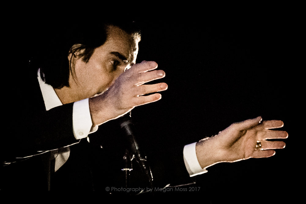 Nick Cave - Vector - 18 Jan 2017-11.jpg