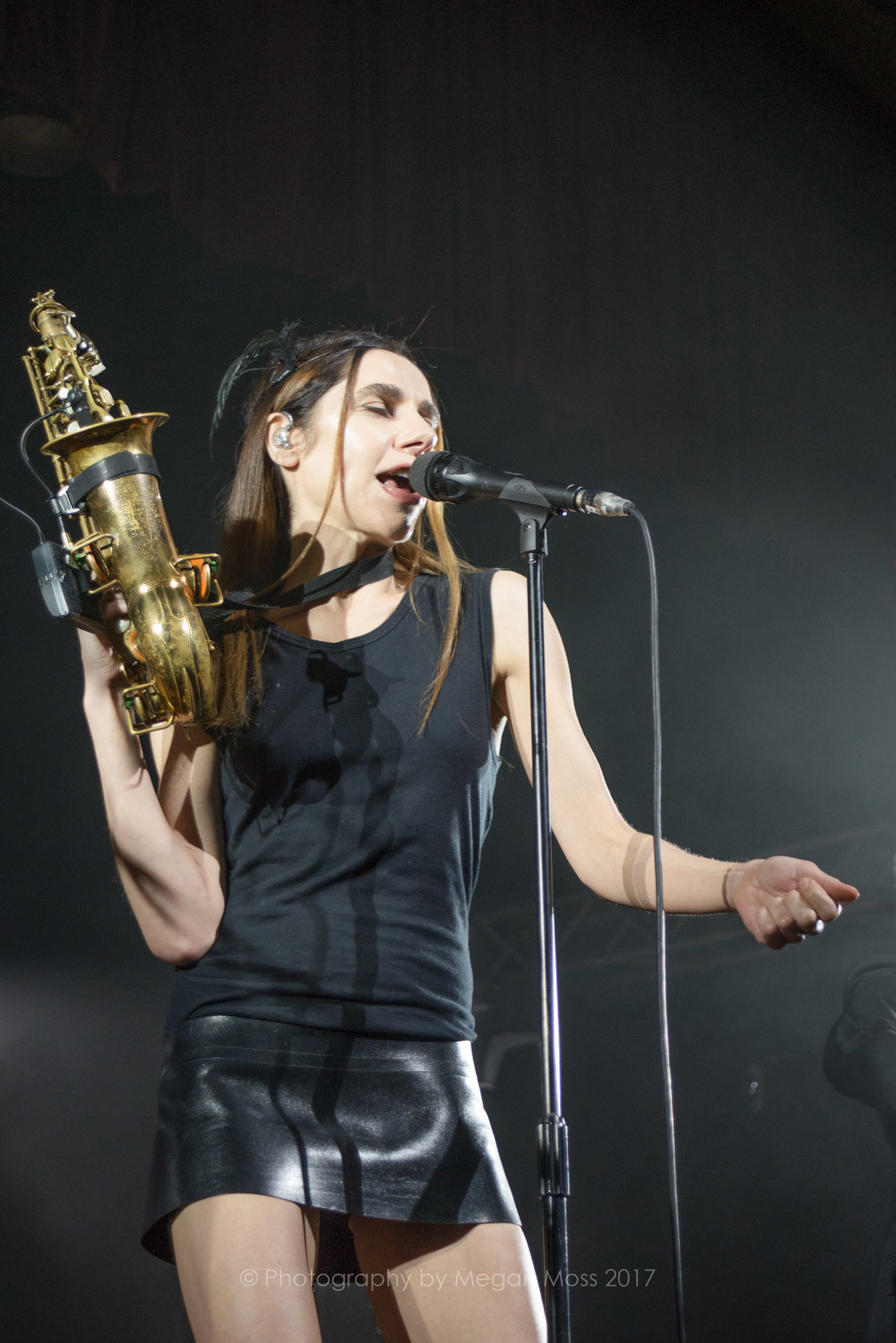 PJ Harvey  24 Jan 2017-3.jpg