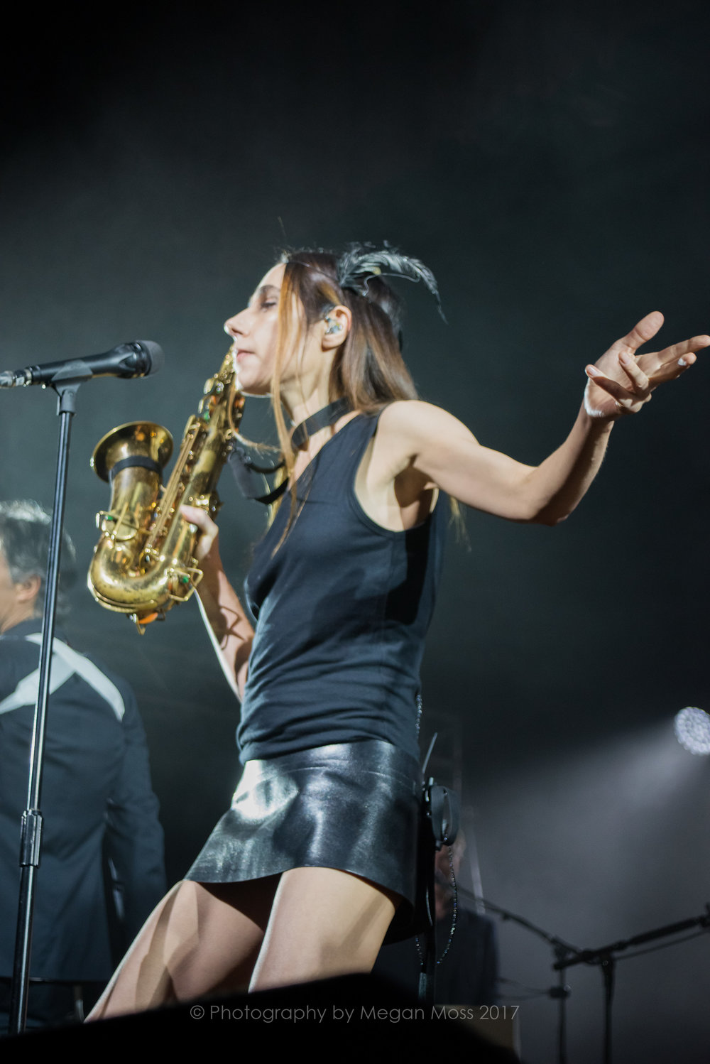 PJ Harvey  24 Jan 2017-10.jpg