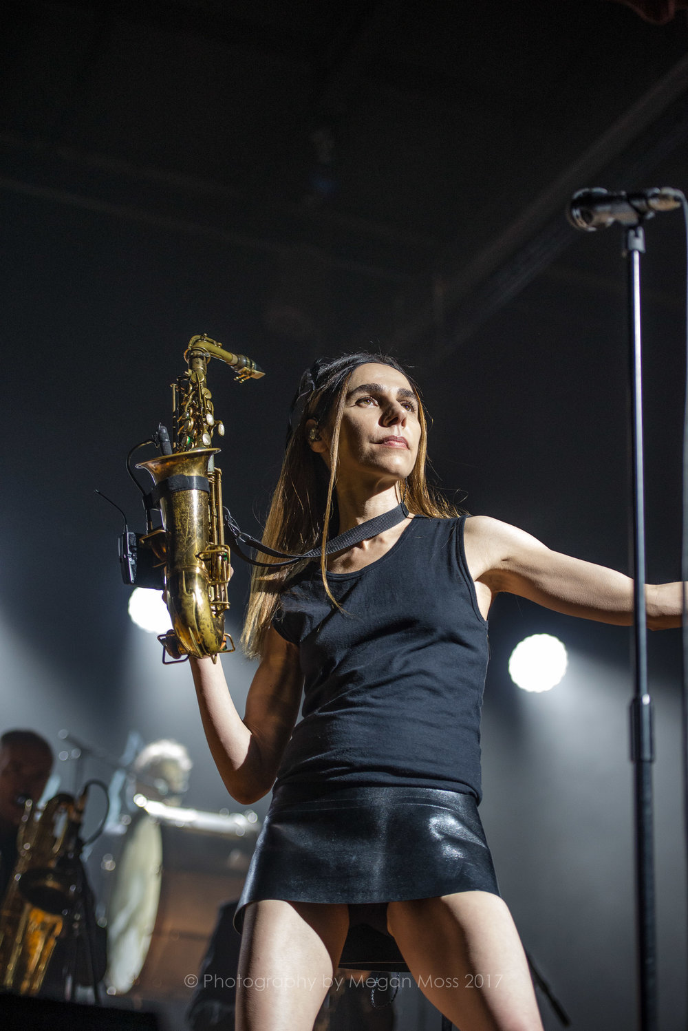 PJ Harvey  24 Jan 2017-17.jpg